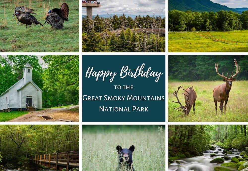 Great Smoky Mountains National Park Happy Birthday
