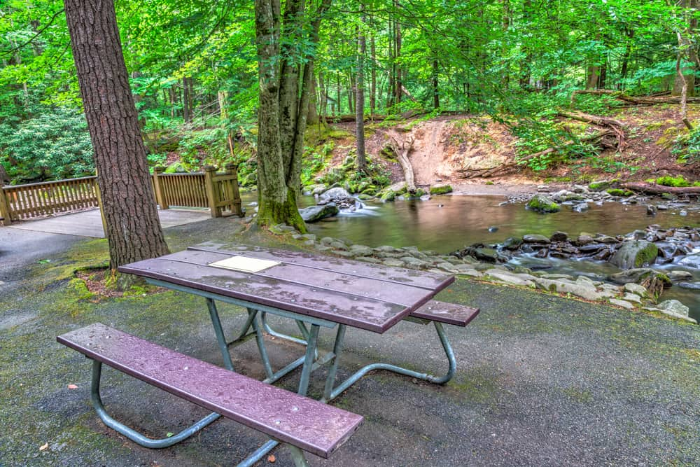 picnic area in the smoky mountains