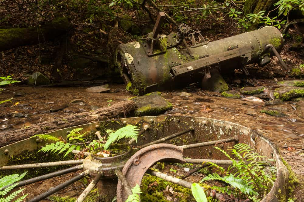 Engine Grapeyard Ridge Trail